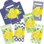 Yellow Lemon Cash Envelopes