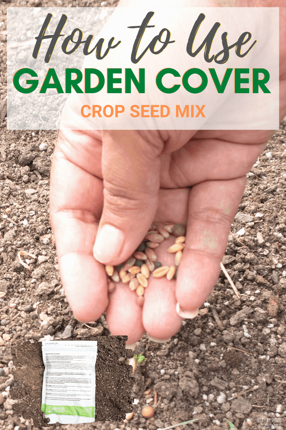 As you garden this season, learn all the benefits of using garden cover crop seeds—a natural way to improve your garden soil and so much more. #gardening #PlantingWithTLM #ad via @mystayathome