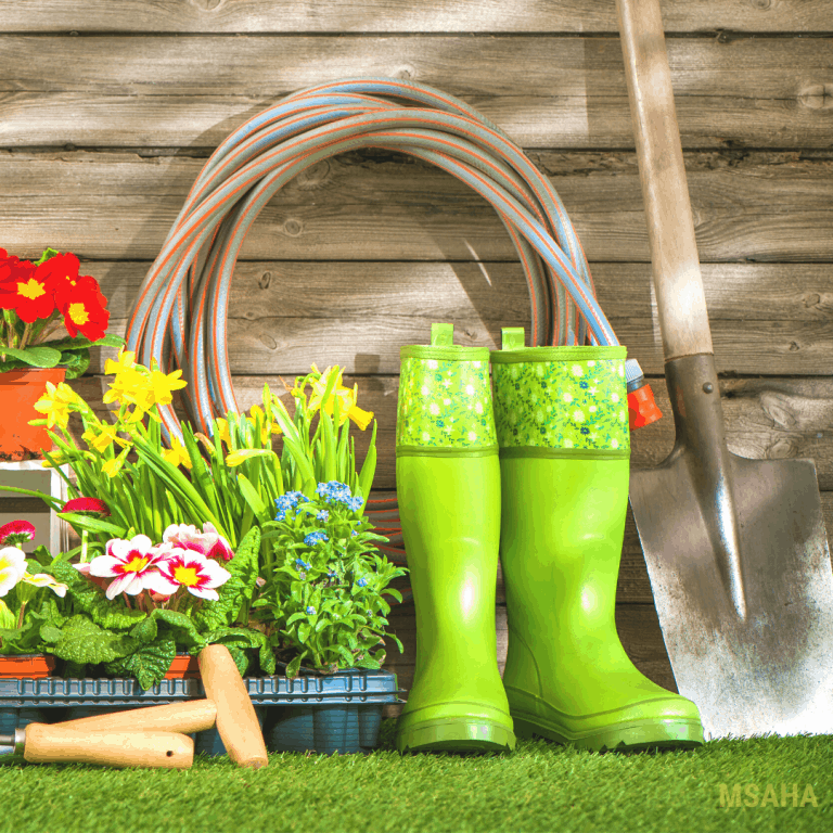 Gardening on a Budget: 12 Tips You Must Follow To Save Money
