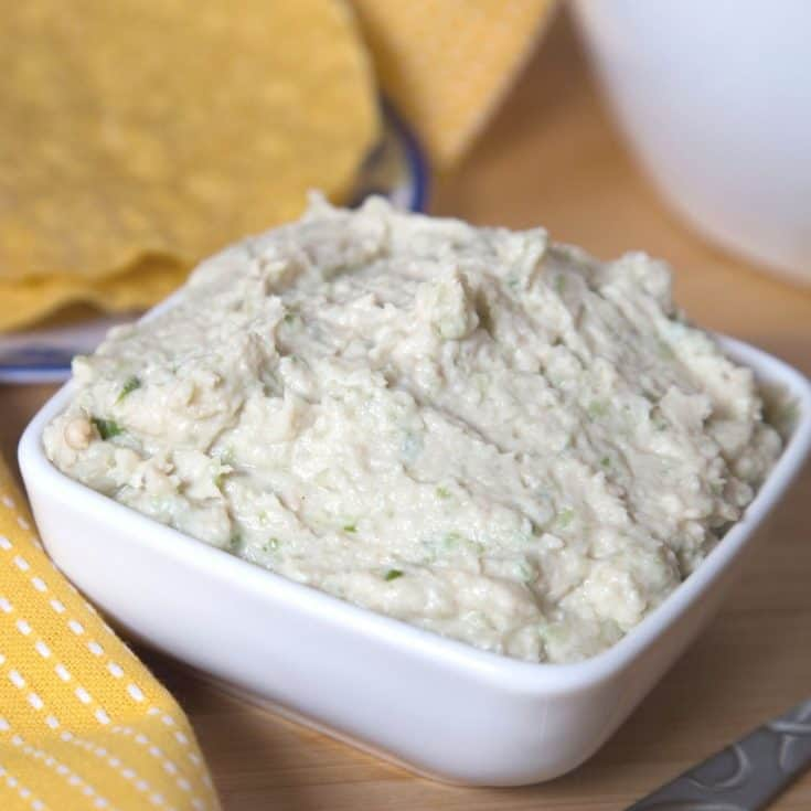 Easy Chicken Dip Recipe