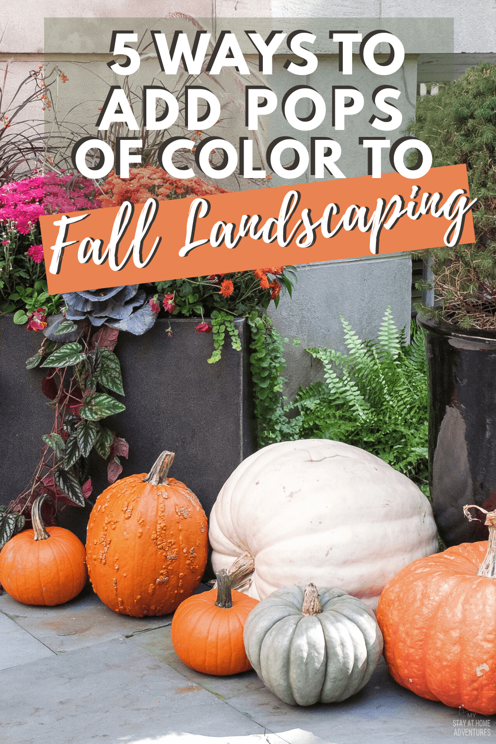 Can you landscape your yard in the fall? The answer is yes. Learn five fall landscaping ideas to help you get started and wow your neighbors. #fall #landscaping #frontyard via @mystayathome