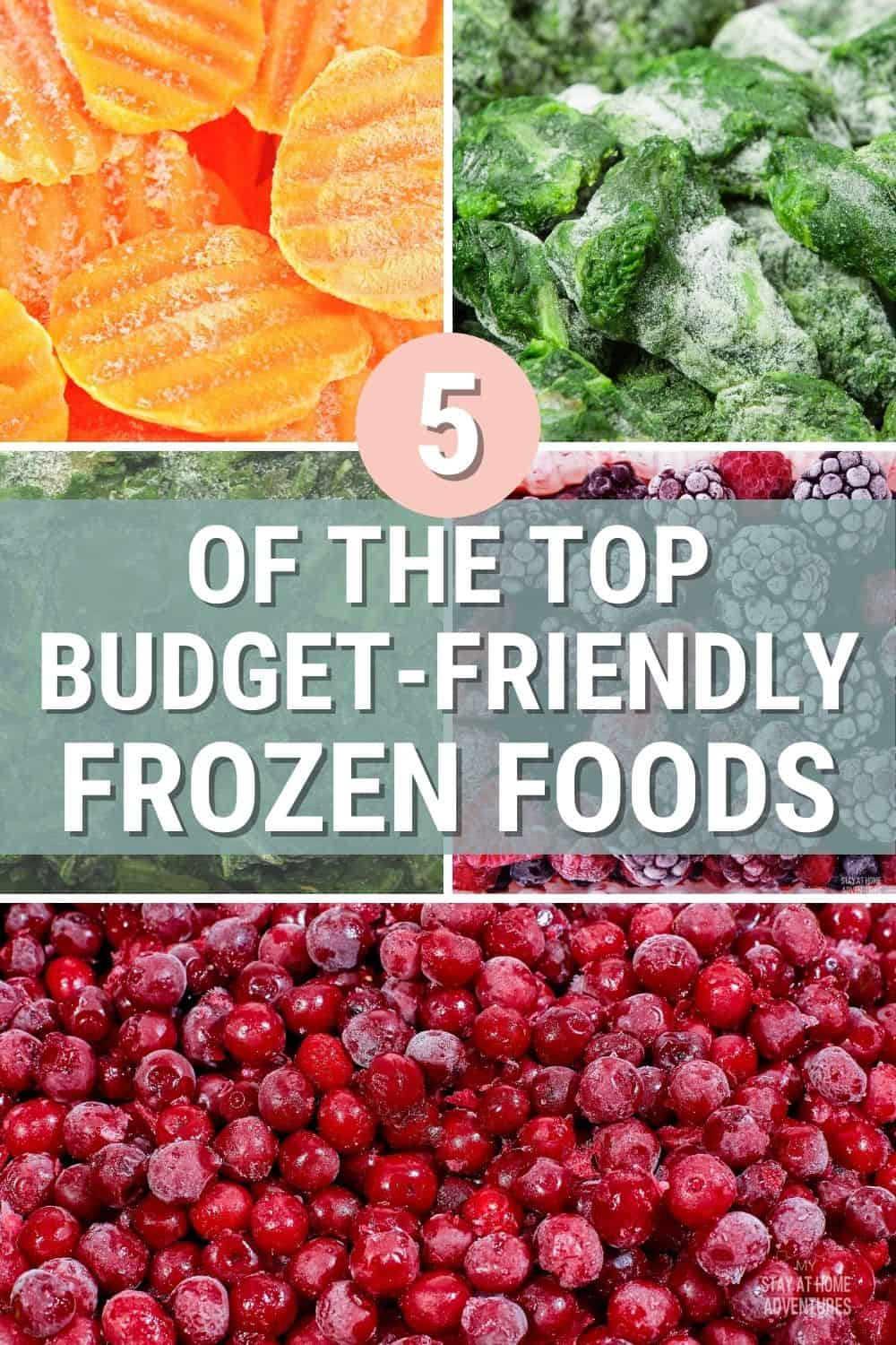 When buying frozen food, which one is good for you and your family and the budget-friendly one? Learn the top 5 best frozen foods. via @mystayathome