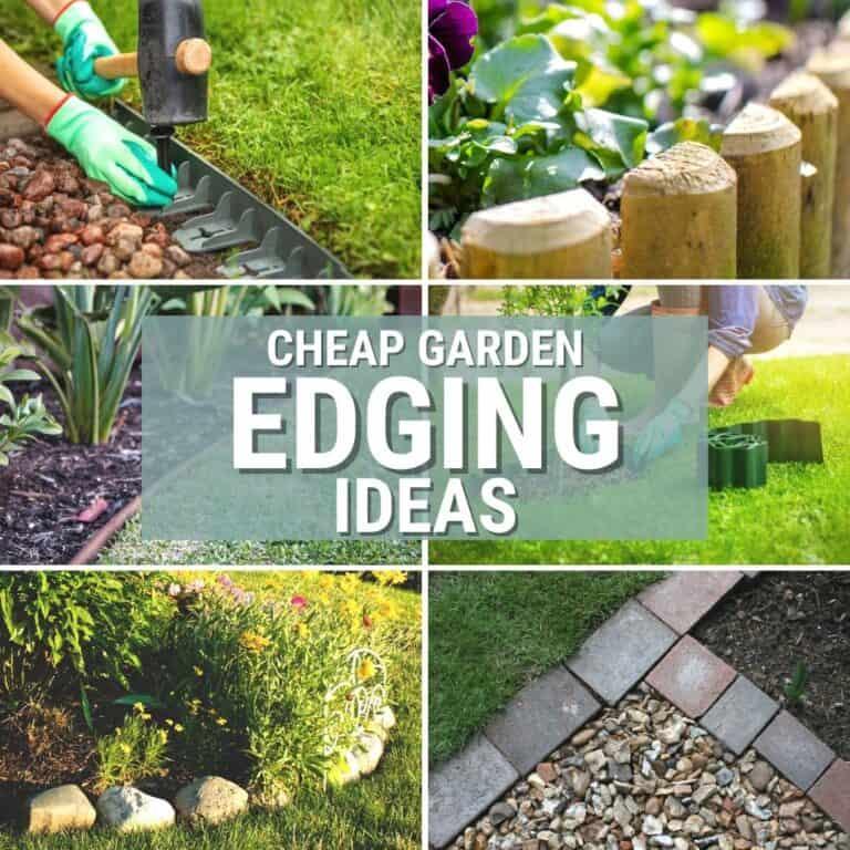 Cheap Garden Edging Ideas for Your Garden