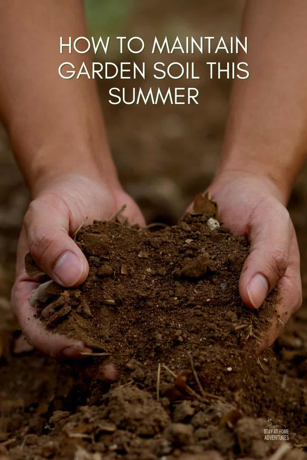 Summer is the perfect time of year for gardening. But, if you want to maintain your garden soil this summer, there are a few things that you need to know. Here's how to keep it healthy and fertile all season long! via @mystayathome