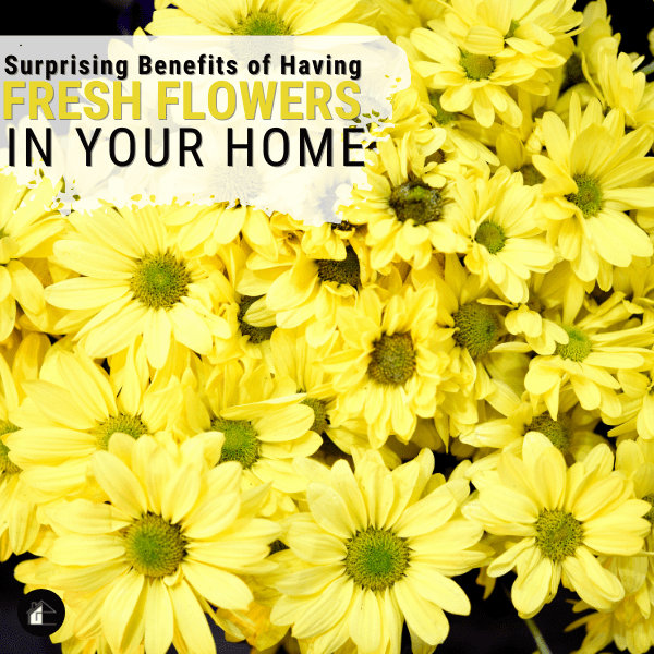 Surprising Benefits of Having Fresh Flowers in Your Home